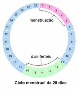 Tabela Menstrual 2013 para imprimir - 2