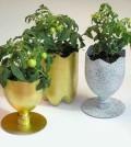 Vasos de flor com pet