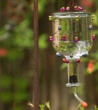 Como Fazer Bebedouro para Pássaros