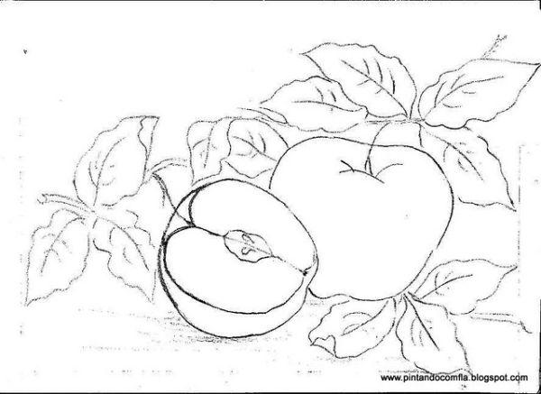 risco de maçã