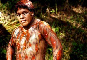 pintura indigena