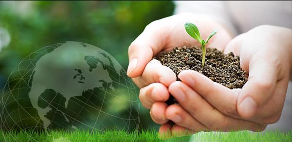 importância da educação ambiental no brasil