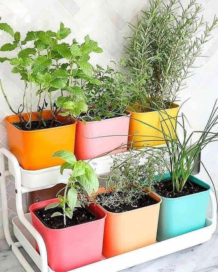horta para apartamento