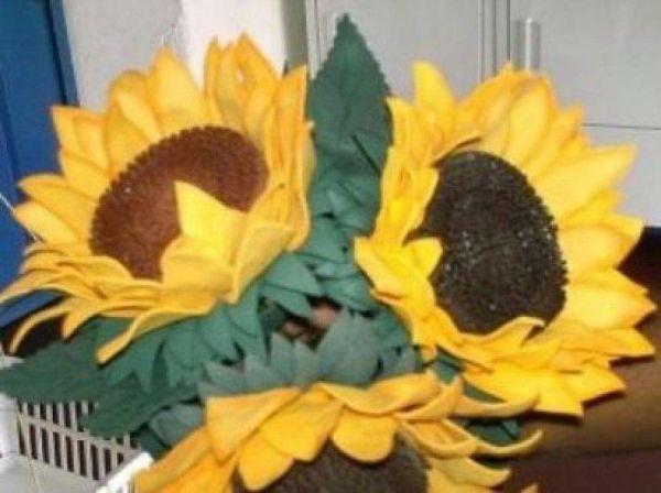 flor girassol eva 11