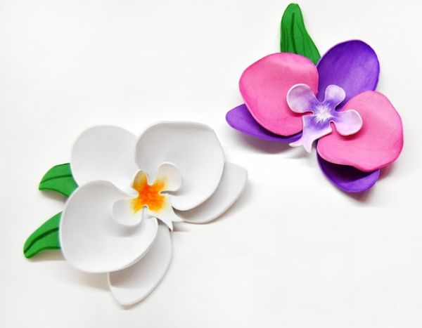 flor orquidea eva 13