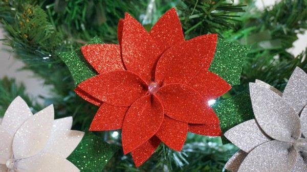flor de natal de eva