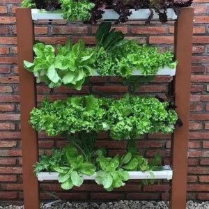 horta em terraço de apartamento